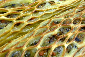 Puff pastry lattice with vegetables